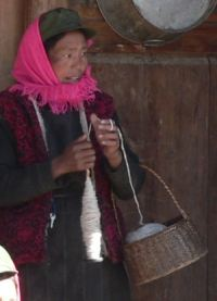 Tibetan woman spinning yak down with a drop spindle